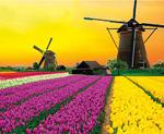 2020德國柏林、漢堡、童話大道、荷蘭全覽13日(全包價含機場稅金、司機領隊小費)